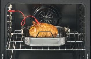 FGGF3058RF Temperature Probe In Use